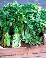 Cilantro en el mercado orgánico el 100, ciudad de México.