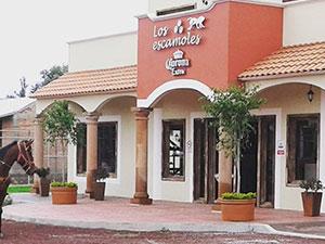 restaurante y bar-Los-escamoles-Hotel-hacienda-teoticamp